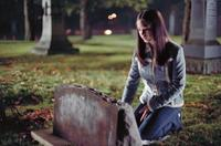Smallville (TV) - 8 x 10 Color Photo #019