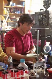 Smallville (TV) - 8 x 10 Color Photo #045