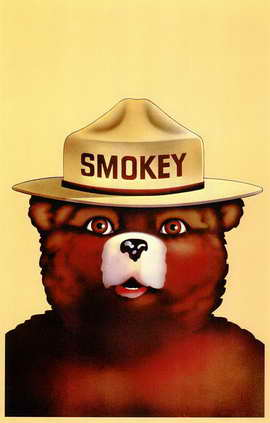 Smokey the Bear - 11 x 17 Movie Poster - Style A
