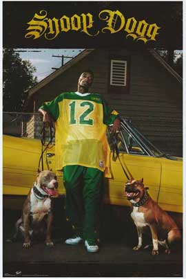 Snoop Dogg - 27 x 40 Movie Poster - Style A