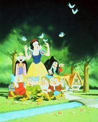 Snow White and the Seven Dwarfs - 8 x 10 Color Photo #1