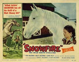 Snowfire - 11 x 14 Movie Poster - Style A