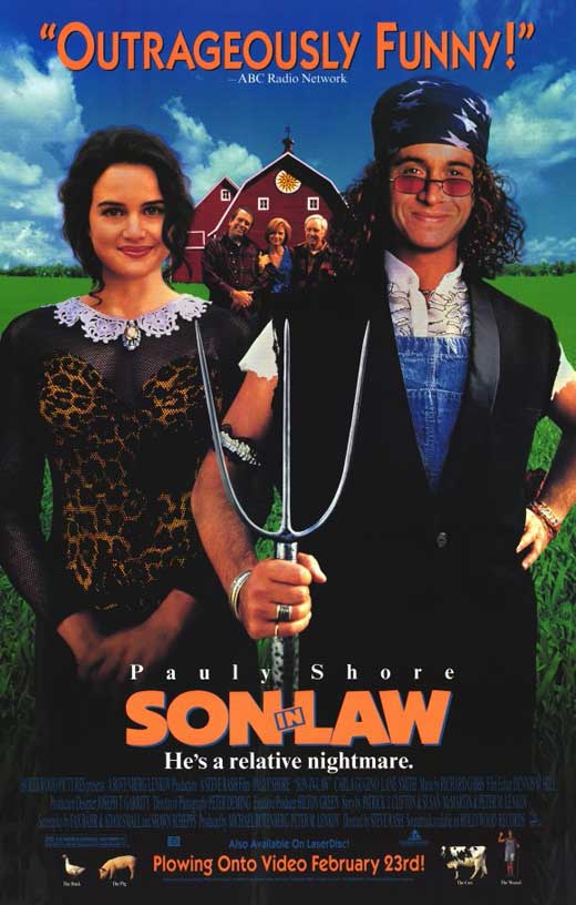 soninlaw movie posters from movie poster shop