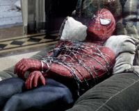 Spider-Man 2 - 8 x 10 Color Photo #40