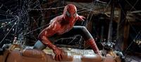 Spider-Man 3 - 8 x 10 Color Photo #6