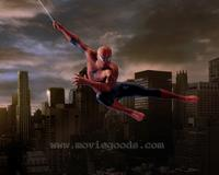 Spider-Man 3 - 8 x 10 Color Photo #39