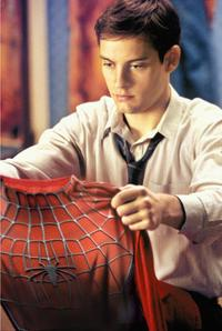 Spider-Man - 8 x 10 Color Photo #1