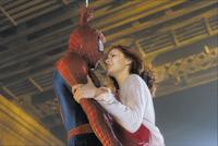 Spider-Man - 8 x 10 Color Photo #6