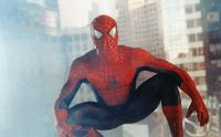 Spider-Man - 8 x 10 Color Photo #17