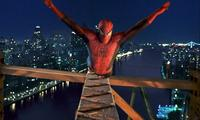 Spider-Man - 8 x 10 Color Photo #22