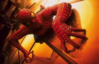 Spider-Man - 8 x 10 Color Photo #51