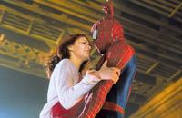 Spider-Man - 8 x 10 Color Photo #50
