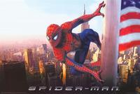 Spider-Man - 11 x 17 Movie Poster - Style H