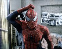 Spider-Man - 8 x 10 Color Photo #42