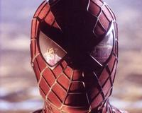 Spider-Man - 8 x 10 Color Photo #45