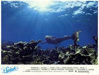 Splash - 11 x 14 Movie Poster - Style B