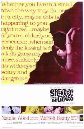 Splendor in the Grass - 11 x 17 Movie Poster - Style A