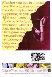 Splendor in the Grass - 27 x 40 Movie Poster - Style A