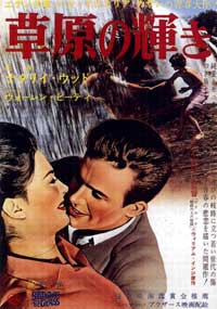 Splendor in the Grass - 11 x 17 Movie Poster - Japanese Style A