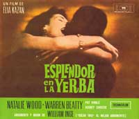 Splendor in the Grass - 30 x 30 Movie Poster - Spanish Syle A