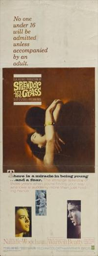 Splendor in the Grass - 14 x 36 Movie Poster - Insert Style A