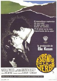 Splendor in the Grass - 11 x 17 Movie Poster - Spanish Style B