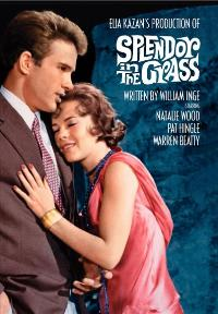 Splendor in the Grass - 11 x 17 Movie Poster - Style C