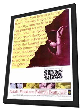 Splendor in the Grass - 27 x 40 Movie Poster - Style A - in Deluxe Wood Frame