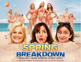 Spring Breakdown - 11 x 17 Movie Poster - Style A
