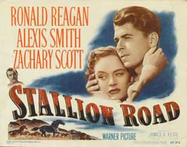 Stallion Road - 11 x 14 Movie Poster - Style A