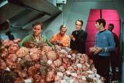Star Trek (TV) - 8 x 10 Color Photo #64
