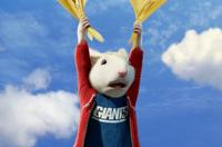 Stuart Little 2 - 8 x 10 Color Photo #12