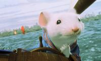 Stuart Little - 8 x 10 Color Photo #1