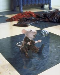 Stuart Little - 8 x 10 Color Photo #22