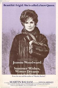 Summer Wishes, Winter Dreams - 27 x 40 Movie Poster - Style A