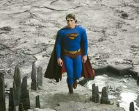 Superman Returns - 8 x 10 Color Photo #33