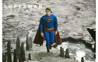 Superman Returns - 11 x 17 Movie Poster - Style O