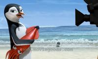 Surf's Up - 8 x 10 Color Photo #18