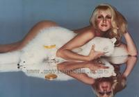 Suzanne Somers - 11 x 17 Movie Poster - Style B
