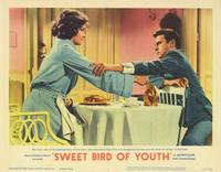 Sweet Bird of Youth - 11 x 14 Movie Poster - Style A