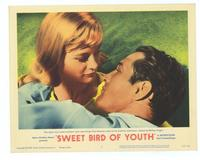 Sweet Bird of Youth - 11 x 14 Movie Poster - Style B
