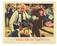 Sweet Bird of Youth - 11 x 14 Movie Poster - Style C