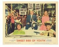 Sweet Bird of Youth - 11 x 14 Movie Poster - Style D