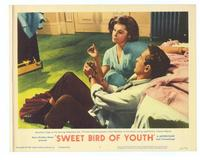 Sweet Bird of Youth - 11 x 14 Movie Poster - Style E