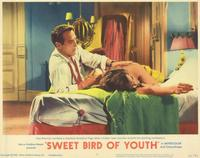 Sweet Bird of Youth - 11 x 14 Movie Poster - Style G