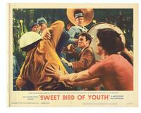 Sweet Bird of Youth - 11 x 14 Movie Poster - Style H