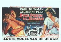 Sweet Bird of Youth - 14 x 22 Movie Poster - Belgian Style A
