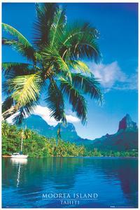 Tahiti Moorea Island - Photography Poster - 24 x 36 - Style A