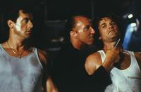 Tango and Cash - 8 x 10 Color Photo #4