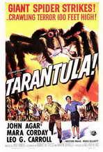 Tarantula - 27 x 40 Movie Poster - Style A